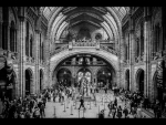 1 NATURAL HISTORY MUSEUM by Darren Worthy_et