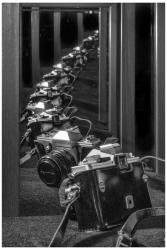 DCC Reflections-5_easythumb