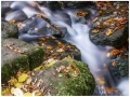 Lumsdale Water_web