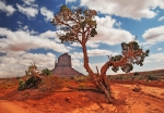 West Mitten Monument Valley USA_tn.jpg