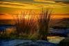 tn_John Newman joint 2nd Sept 2014 earthscape colour
