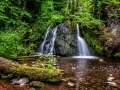 The Fairy Glen by Marie Rollitt_web