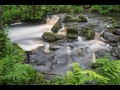 Nick Wheat - Padley Gorge_web