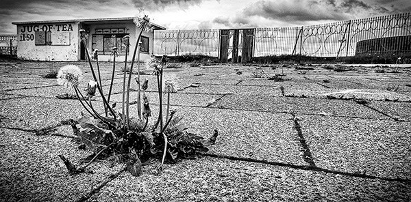 June 'Dereliction and decay' monochrome print competition