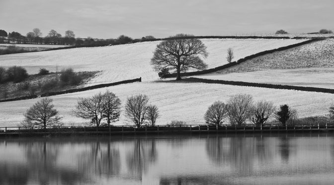 SEPTEMBER WEATHER monochrome online competition